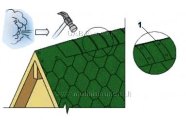 ZAĻI kores bitumena šindeļi Ridge green